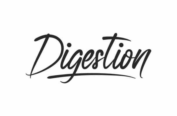 Digestion Brush Hand Lettering Font