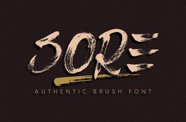 Sore Authentic Brush Script Font