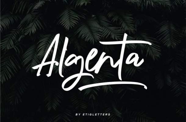 Algenta Script Font