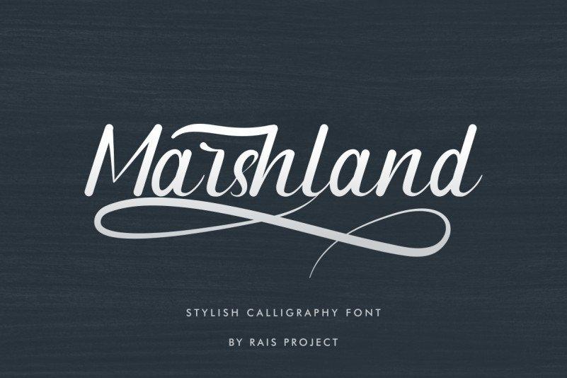 Marshland Calligraphy Font-1200x800