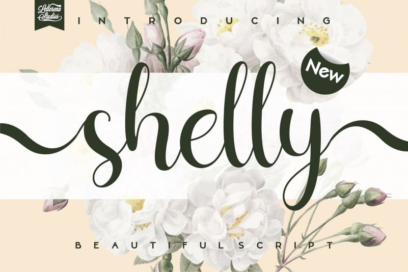 Shelly Calligraphy Font