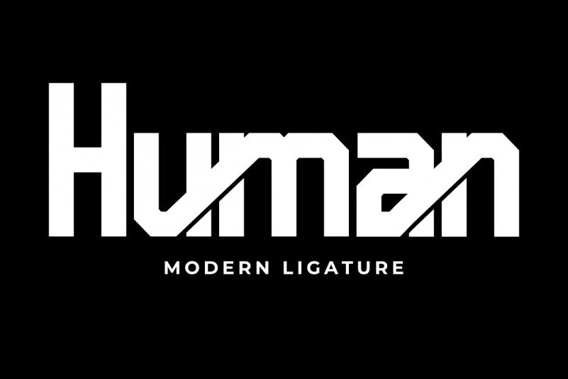 pro-human-4