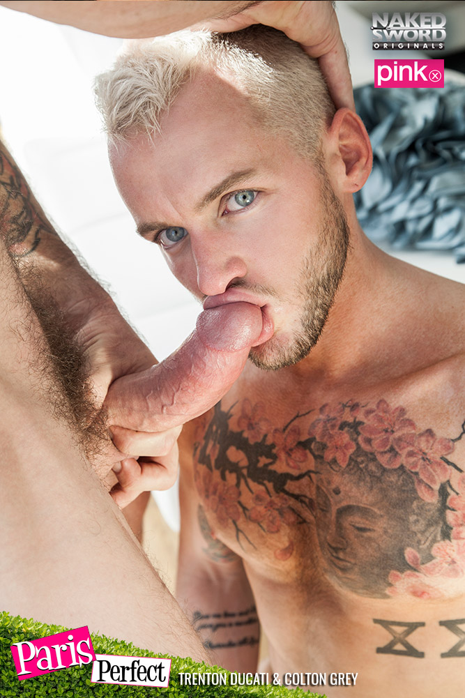 Trenton Ducati Drills Colton Grey 02