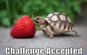 #31WriteNow blog challenge
