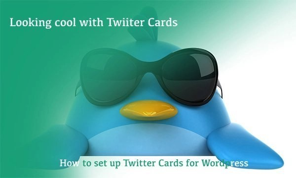 Set up †witter cards for wordpress