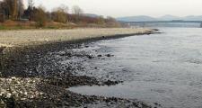 Der Rhein kann Pegel nicht halten