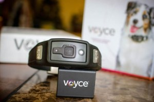 Voyce pet GPS tracker