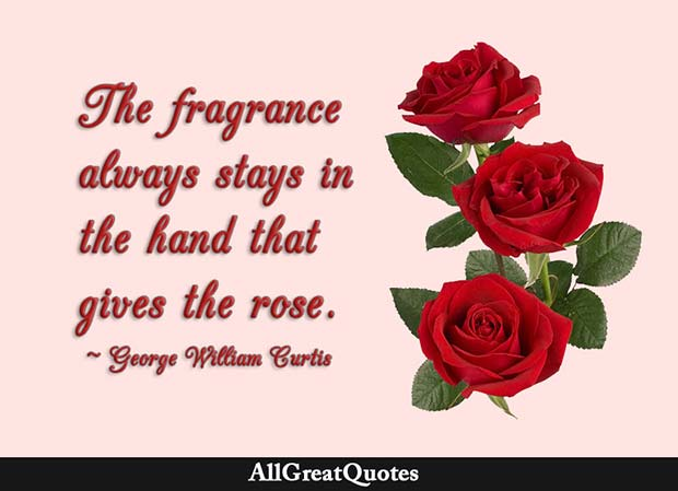 The fragrance always stays in the hand that gives the rose. - George William Curtis - AllGreatQuotes