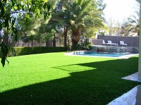 Synthetic Grass Cost South Hill, Washington Backyard