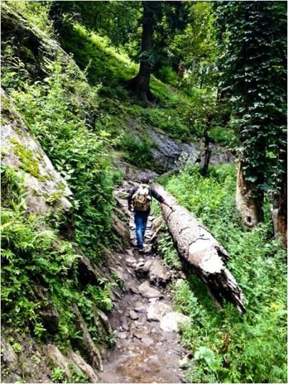 Hike to Hot water spring Kheergnaga, Himachal Pradesh