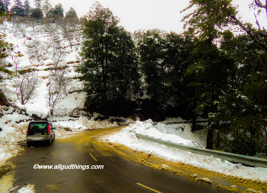 Mashobra near Shimla - Beautiful Shimla after Snowfall