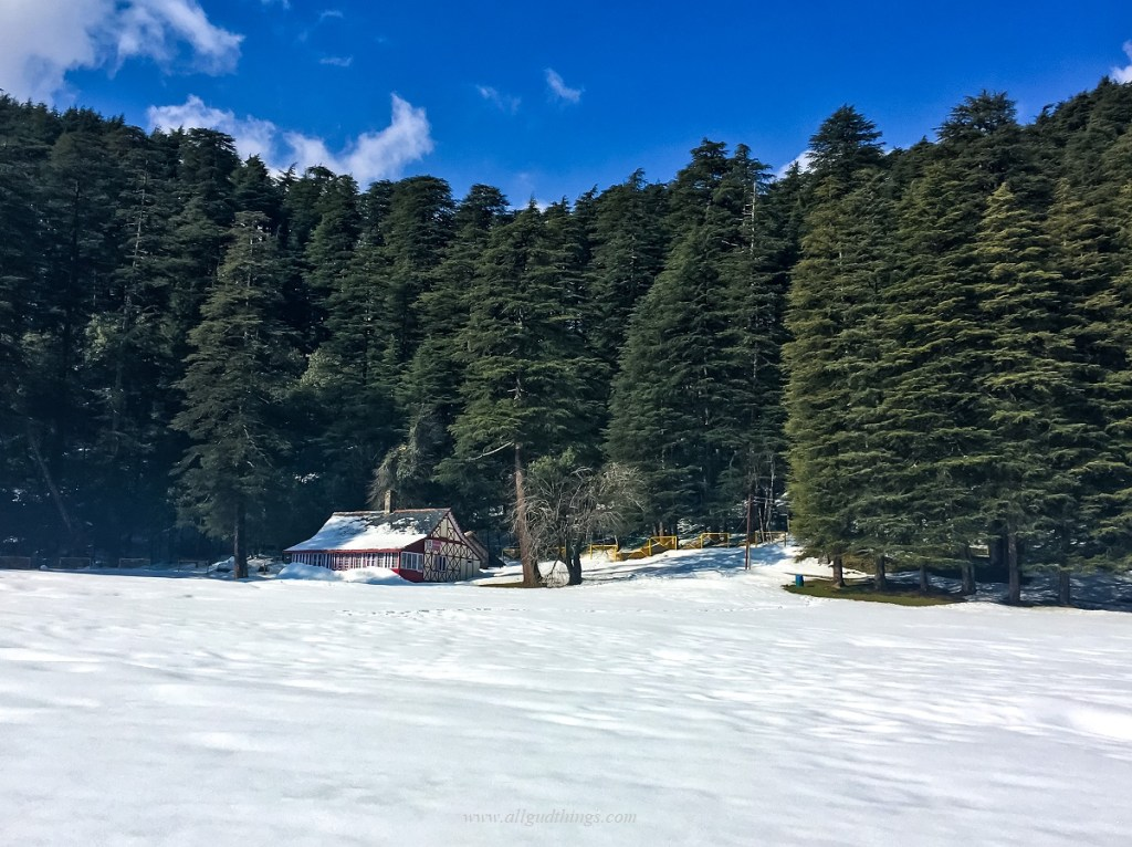 HPTDC cottage in Khajjiar Meadows- Dalhousie Chamba Khajjiar Road Trip