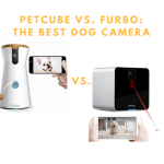 Petcube Play vs. Furbo: The Best Dog Camera Comparison