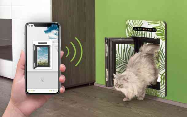 The Best Smart Dog Doors That Youll Love All Home Robotics