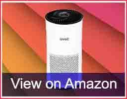 LEVOIT-LV-H133-Ai-Purifier-Review-allhomex