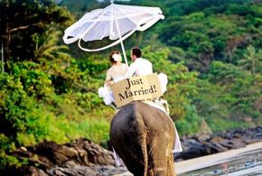 Chose The Top One Best Honeymoon Destinations Around The World