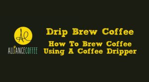 drip brew coffee guide