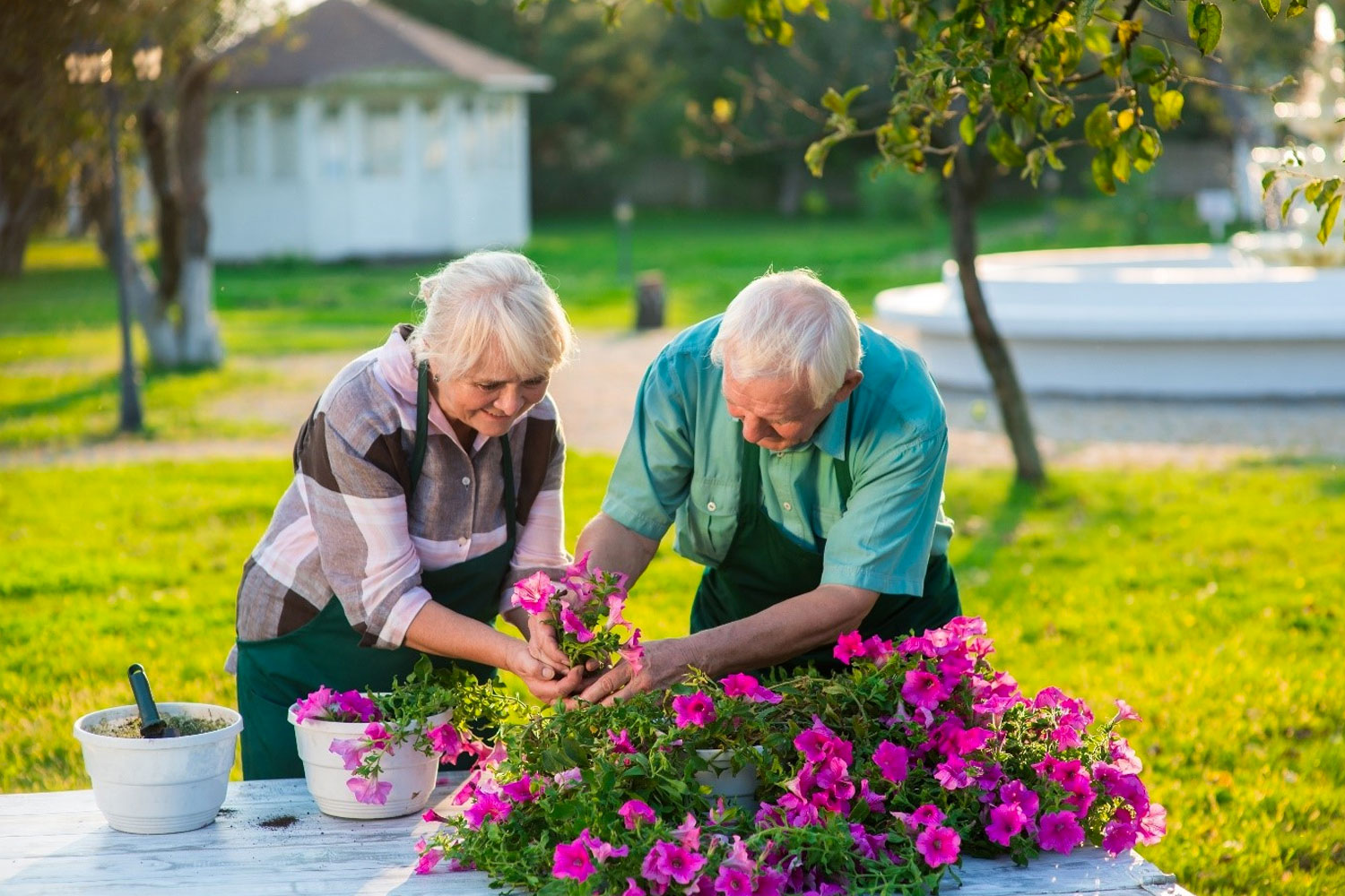 Outdoor And Indoor Summer Activities For Older Adults