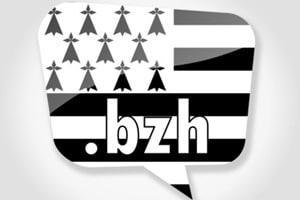 Bretagne-BZH-noms-de-domaines-article
