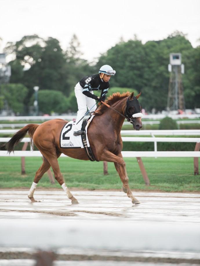 saratoga-race-track-thoroughbred-horses-equine-photography-1