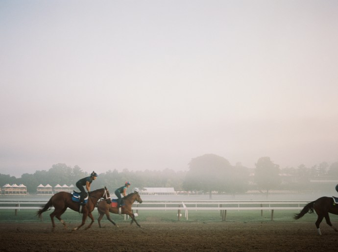 saratoga-race-track-thoroughbred-horses-equine-photography-38