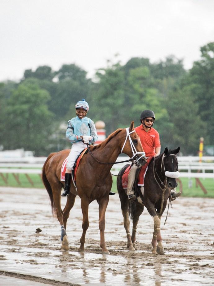 saratoga-race-track-thoroughbred-horses-equine-photography-4