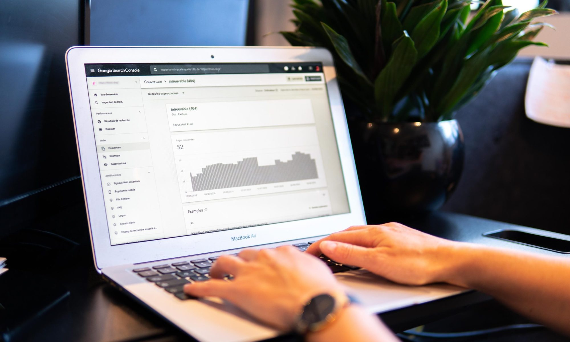 computer program to help you boost your SEO