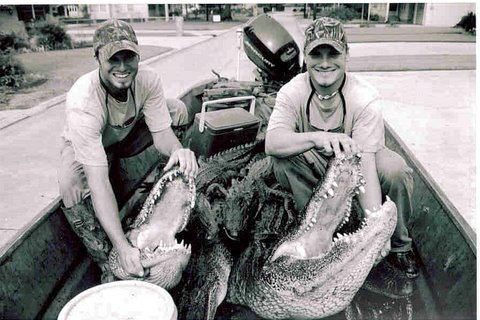 DJ & JACK Alligator Pic