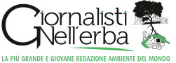 logo-GNE-WEB-251x90