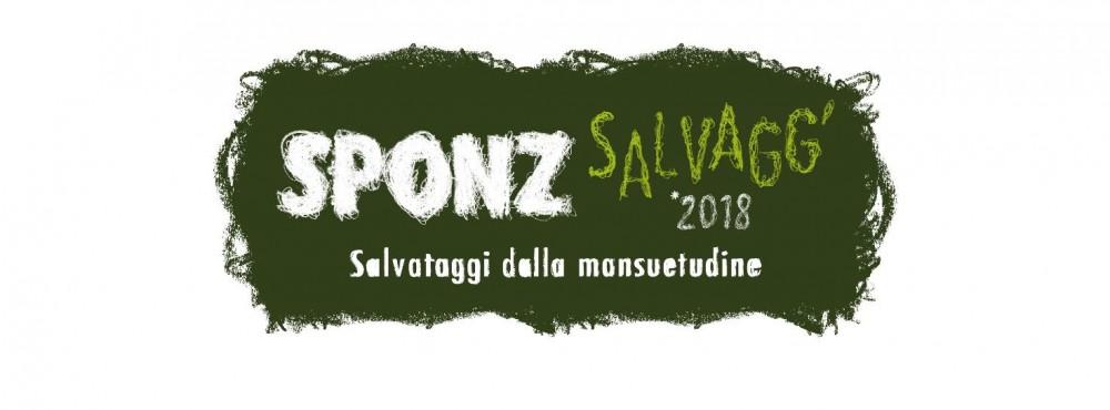 sponz_2