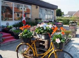 Blomsterbutikken16-01