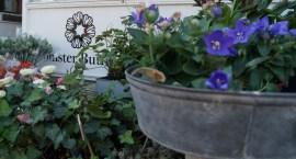 Blomsterbutikken16-02