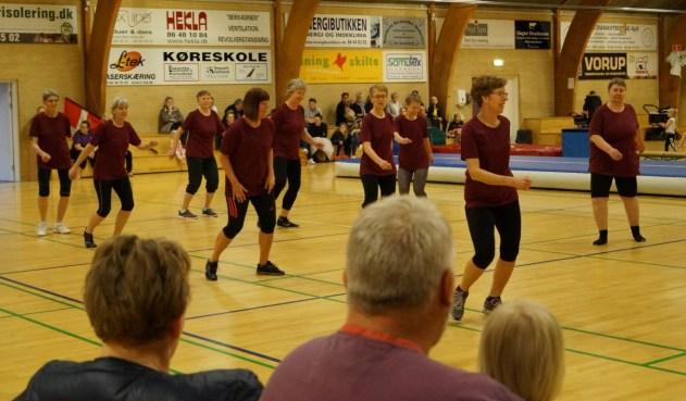gymnastikopvisning2017-13