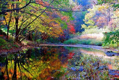 Autumn Reflections, China