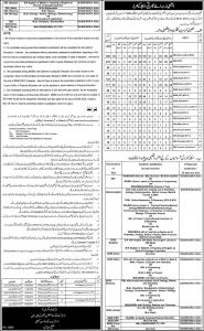 vehari district ese jobs