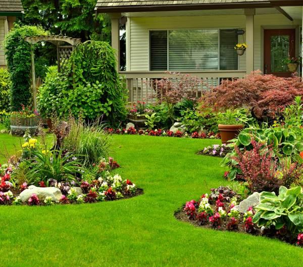 spring lawn clean- checklist
