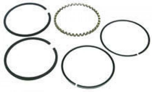 BRIGGS & STRATTON RING SET 499996