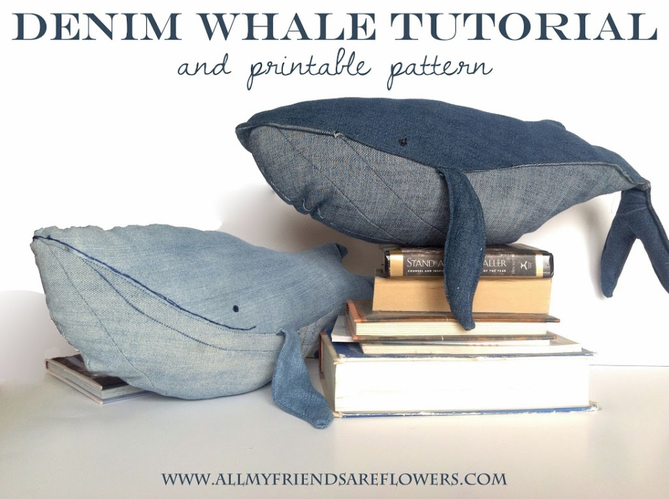Whales-on-Books-for-final-blog-post
