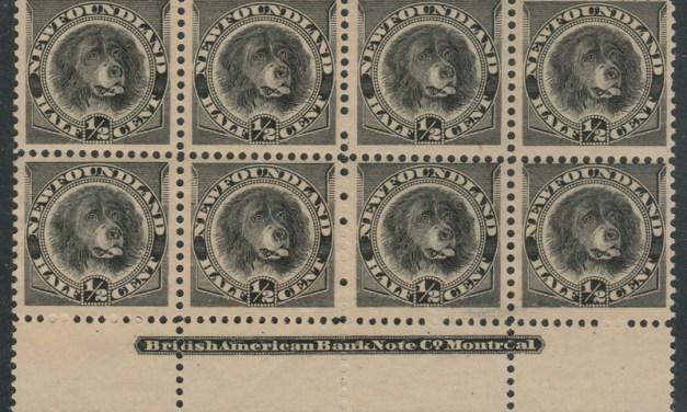 Newfoundland #58 1894 1/2c Black Imprint Block (8)