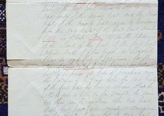 Sam Greer signed 20 Feb 1890 lot one, block four English Bay document, from a new find