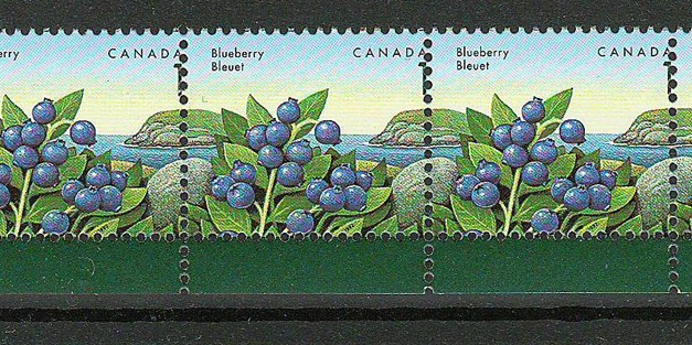 Canada #1349var VFNH unlisted 1992 1c Blueberry Printing Shift Strip