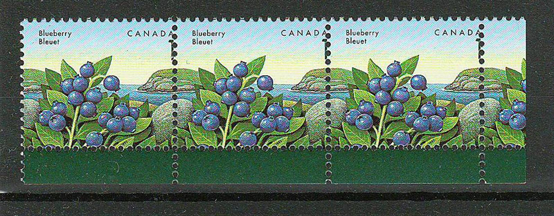 strip of blueberry stamps