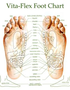 How to apply essential oils your feet support body systems all natural also reflexology with  good rh allnaturalandgood