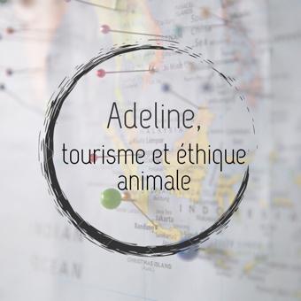 Adeline, tourisme et éthique animale