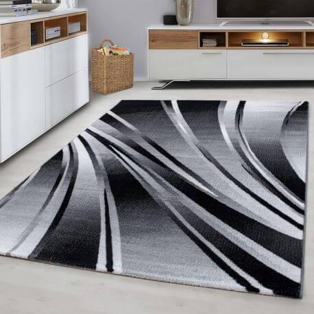 tapis courbe moderne pour salon