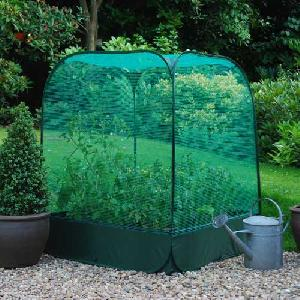 Large Raised Bed With Pop Up Net Cover From Raised Bed