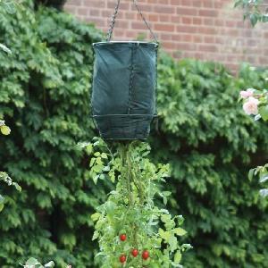 Patio Garden Planter Ideas