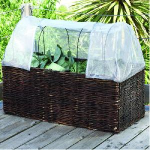Vegetable and Tomato Planter from Patio Growing  Allotment Shop