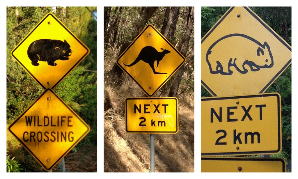 Wildlife Street Signs in Australia