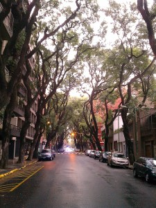 The tree-lined streets of Palermo Soho in Buenos Aires